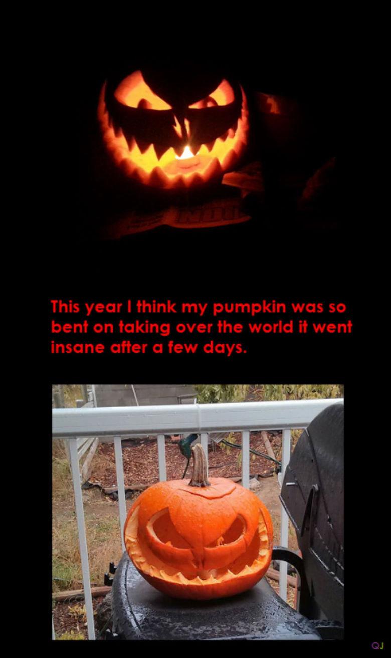 Pumpkin gone bad. .. Related Pumpkin gone bad Related