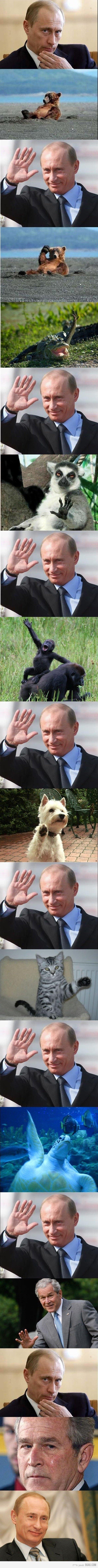 Putinomy. Found on 9gag.. Looks like Bush was... Putinomy Found on 9gag Looks like Bush was