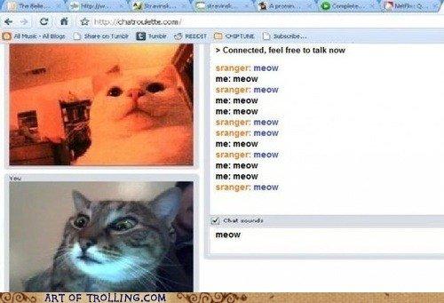 """Tail of two Kitties. Pun. adorer Donna ,"""", rammer: murcan ml: anew mummar ararm I r'. MEN Kim? tranger: mm: -w HEW. >sranger Cats cat"""