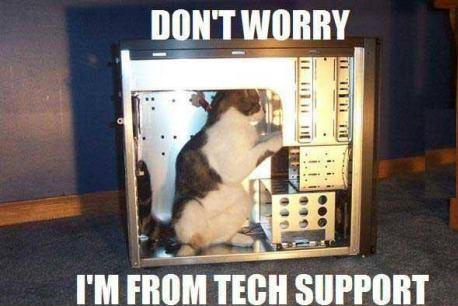 Tech-cat. . Tech-cat