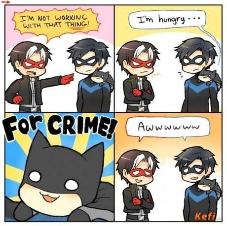 The Batcat. . batman cat robin Nightwing Cats aww