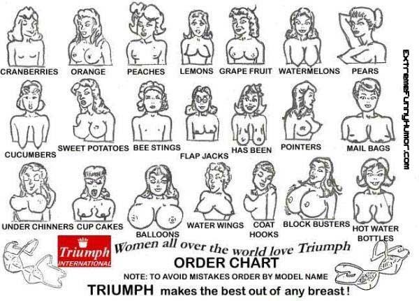 the boob chart. . BWEST BEE HINGE an was viii; WATER AANGS T Betetr toor WATER ORDER CHART NOTE: TO HUGH DEER BY HEEL HAHE the boob chart BWEST BEE HINGE an was viii; WATER AANGS T Betetr toor ORDER CHART NOTE: TO HUGH DEER BY HEEL HAHE