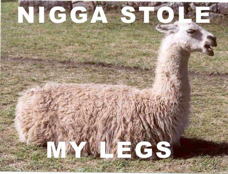 they got my legs. . they got my legs