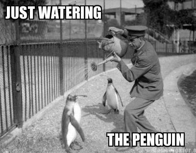 This.. Old Timer Photo i stumbled across.. PENGUIN oldtimey funny makeitgrow Animals blackandwhite