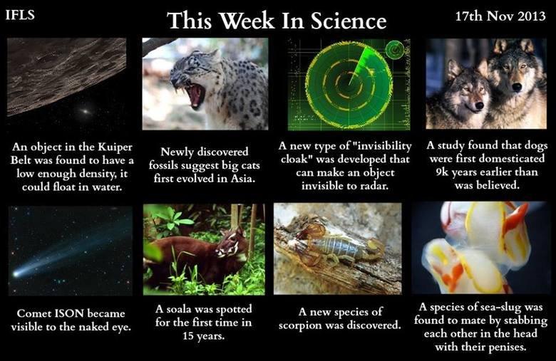This week in science!. This week in science! Kuiper belt object: http:///19xn3n3 Big cats: http:///1apVBv2 Invisibility cloak: http:///173ehAt Dog domestication