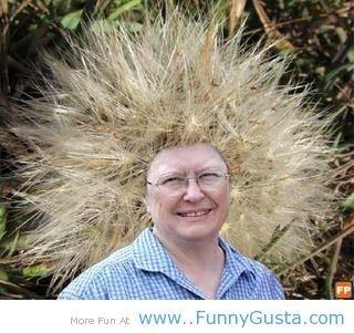 thorny hair style. thorny hair style. thorny hair style