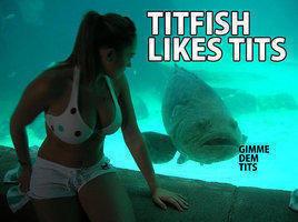 titfish. likes tits. gimme dem tits