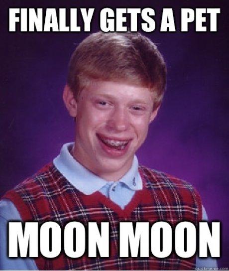 title. .. Moon Moon's FW
