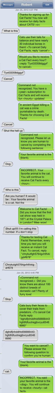 Trolling 101. Not 100% OC, found in my old lol folder.. mum. til' tittel' lololol Cats onyxv