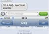 Dog Texts Comp 2