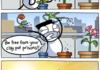 Poor plants