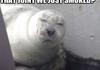 Stoner Seal