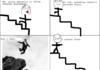 Fucking stairs