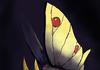 Pokemon fusion time