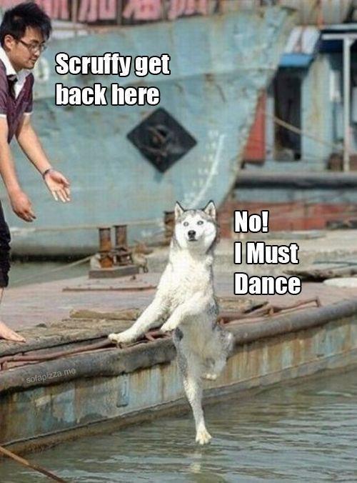 Dance the dance of life!. . Tai Dance the dance of life! Tai