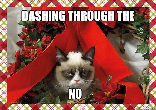 Dashing Through The No. . ifa Dashing Through The No ifa