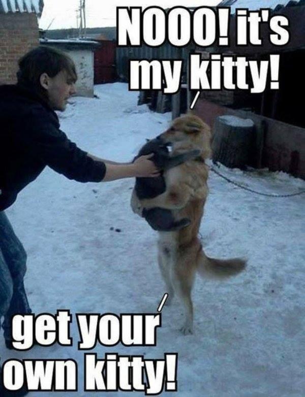 Daww. . mu gum! fervour/ own kitty!. DEER LORD IT IS HAPPENING ALREADY Daww mu gum! fervour/ own kitty! DEER LORD IT IS HAPPENING ALREADY