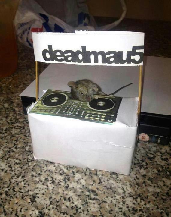Deadmau5. Dead mouse.. DEAD?! the game