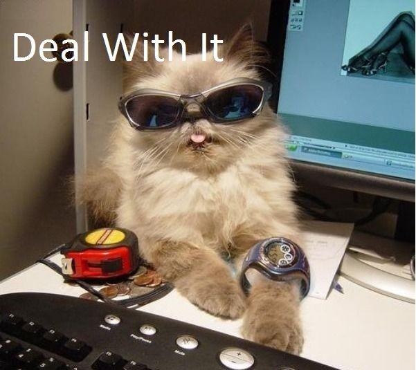 Deal wit it. desc. deal with it