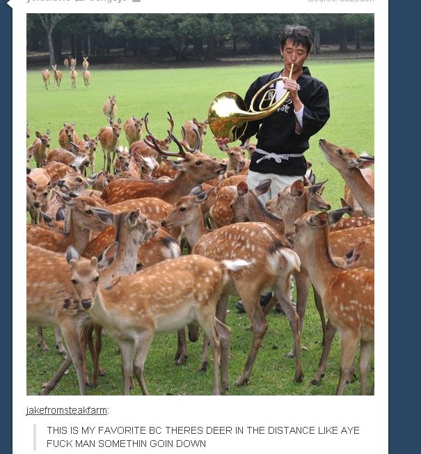 Deer. .. Deer is both singular and plural. Deer is both singular and plural