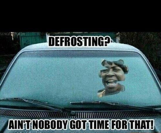Defrosting?. . Defrosting?