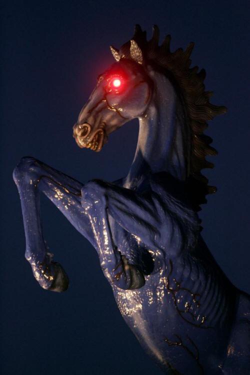 Demon Horse. Welcome to Colorado, !!. dia demon horse