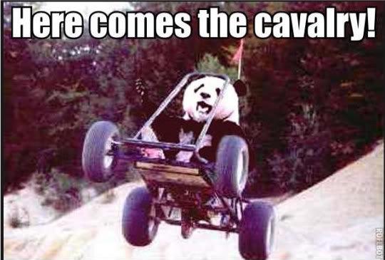 description. tags. panda cavalry fuck yeah