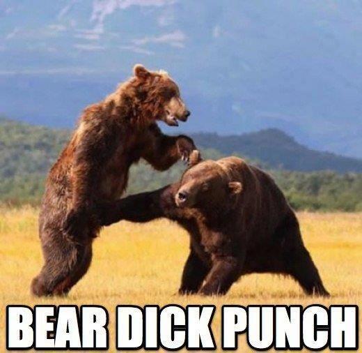 DICK PUNCH. .. How about bear dick kick?! lol Bear dick punch win