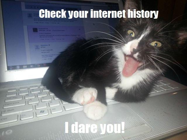 Dirty cat.... OC captions. NIGER Will! internal adasdasdasdas