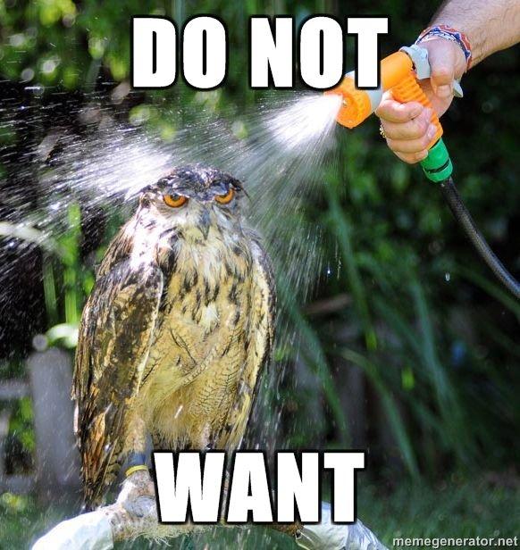 DO NOT WANT. do not want. do not want