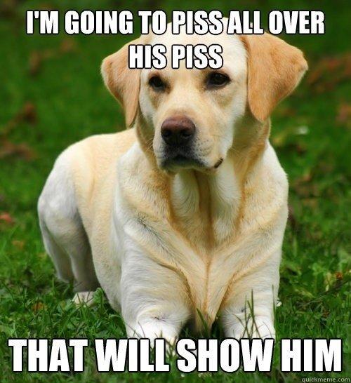 dog logic. . I' M GOING TIO, PISS All WEB THAT ' ti' Soleill' l HIM dog logic I' M GOING TIO PISS All WEB THAT ' ti' Soleill' l HIM