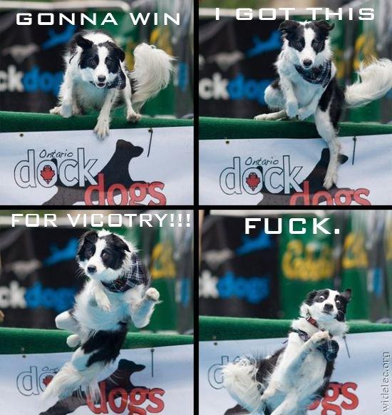 Dog's Can't Spell. .. >Dog's can't spell >Dog's , you srs? God is a lie