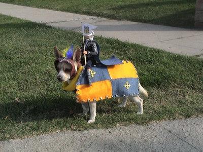 dog soldier. dog soldier.. Do want! XD dog soldier