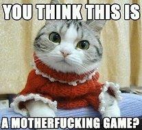 don't mess with kitty. .. asseeninthefunnyjunkcommentsection.jpg cat Kitten lolcat
