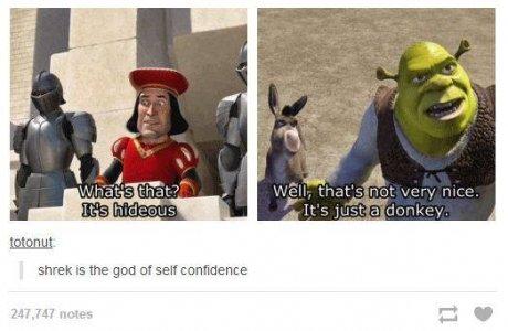"""Donkey's face tho. .. """"the god of self confidence""""... I think you mean just """"god"""". Donkey's face tho """"the god of self confidence"""" I think you mean just """"god"""""""