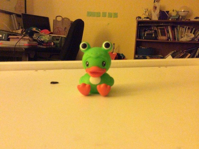 Duck.... A cute little duck. :3 .. that is a cute little dick Duck Cute Frog lol idk