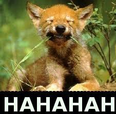 HAHAHA. hahaha i'am funny X,D.. so cute :3 haha funny