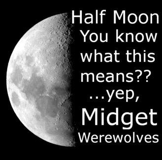"Half moon. Not OC, but I lol'd. ltr.. Half Moon Ier"" what this means? Midget Werewolves Half moon Not OC but I lol'd ltr Moon Ier"" what this means? Midget Werewolves"