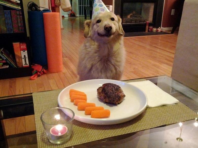 Happy birthday Dog. :3.. The recession hit Chuck Testa pretty hard. The man's gotta find some way to eat. Happy birthday Dog :3 The recession hit Chuck Testa pretty hard man's gotta find some way to eat