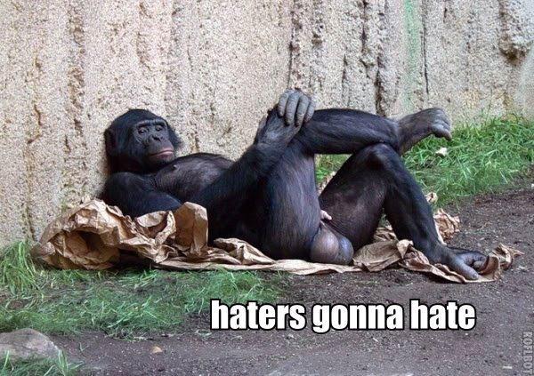 Haters Going To Hate. Haters Going To Hate. llt.) imag Haters Going To Hate llt ) imag