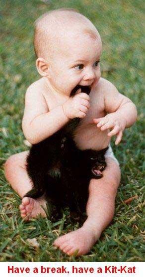 Have a break, have a kit kat. . Have a break. have an Kitnkat Have a break have kit kat an Kitnkat