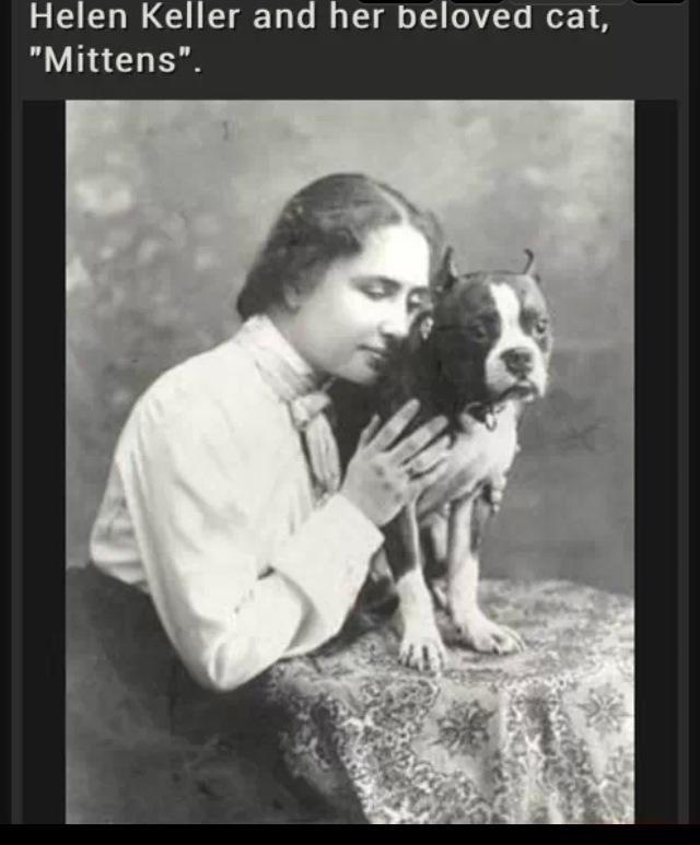 """helen keller love. lets start a post on helen keller jokes i know a few...PLEASE add more. Helen Keller and her beloved cat, Mittens"""". helen keller love lets start a post on jokes i know few PLEASE add more Helen Keller and her beloved cat Mittens"""""""