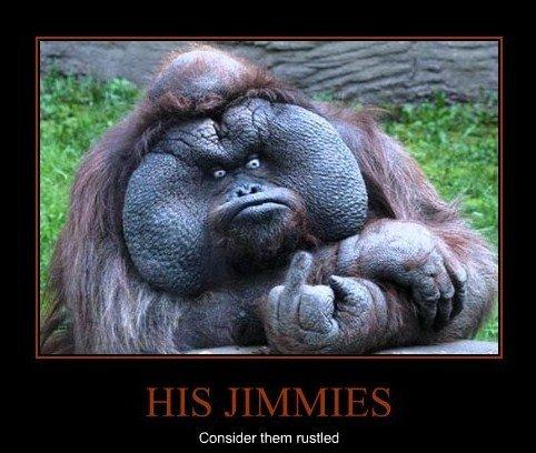 His jimmies. . misled. rustled thread... jimmies rustled
