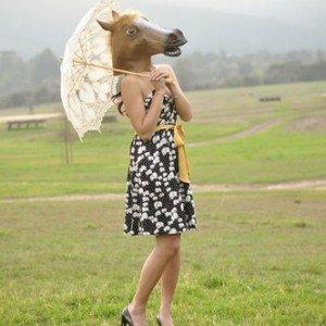 Horse head costume online. beauty horse head mask from horsemasksale.com.. I also like zebra head mask : horse mask for s