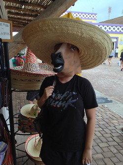 horse head mask. . horse head mask