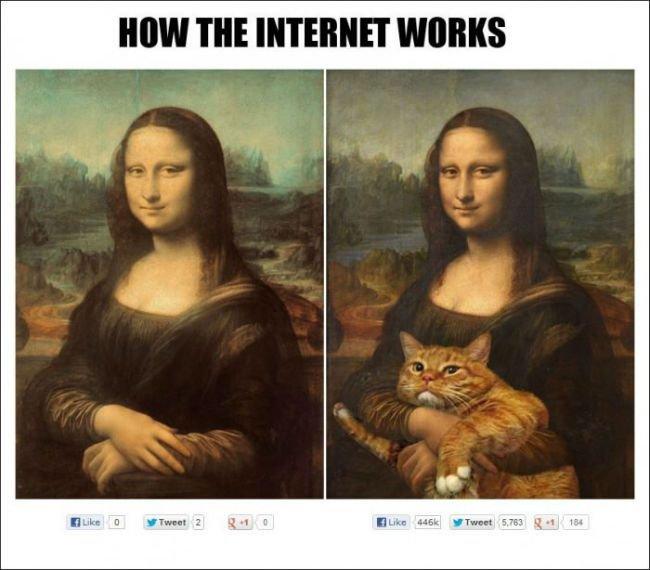 how internet work. . how internet work