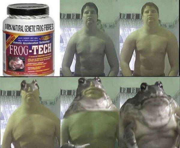 How to become a frog. . asdasdasdasdas