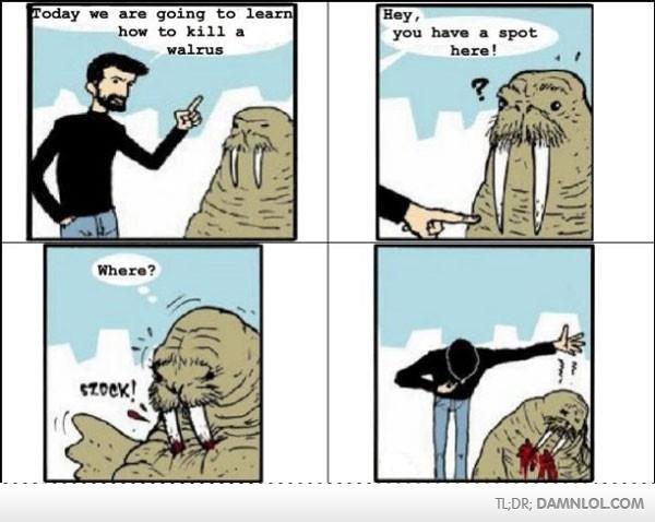 How to Kill a Walrus. . EUR; DAMN. repost faggot comic walrus