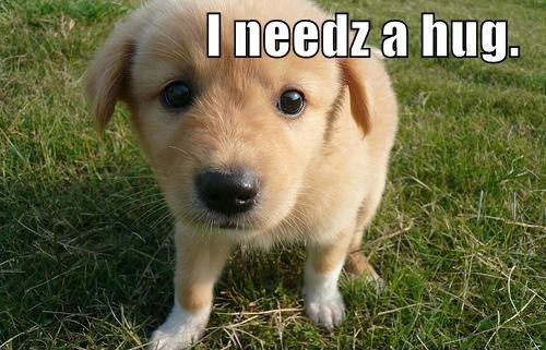 Hug me. Some days you just need one.. hug me