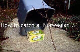 Legendary. SO epic.. i'm norwegian, and i lol'd Legendary SO epic i'm norwegian and i lol'd
